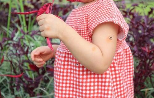 cara mencegah dan mengatasi penyebab darah manis pada anak