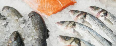 ikan yang bagus untuk MPASI, ikan yang bagus untuk bayi, ikan untuk mpasi, cara mengolah ikan untuk mpasi